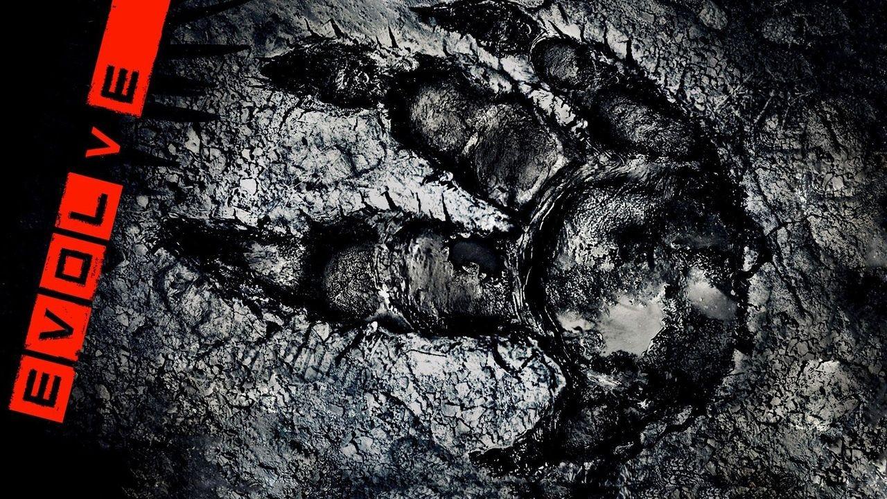 Evolve impronta