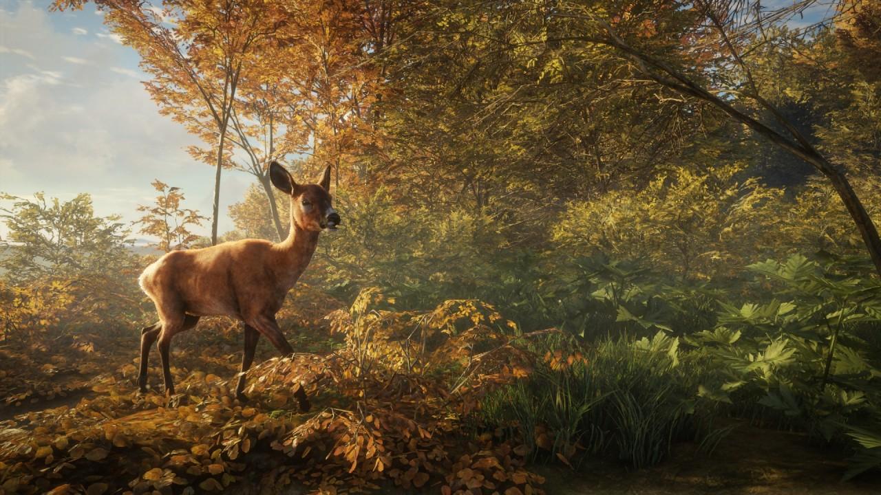 theHunter: Call of the Wild cervo